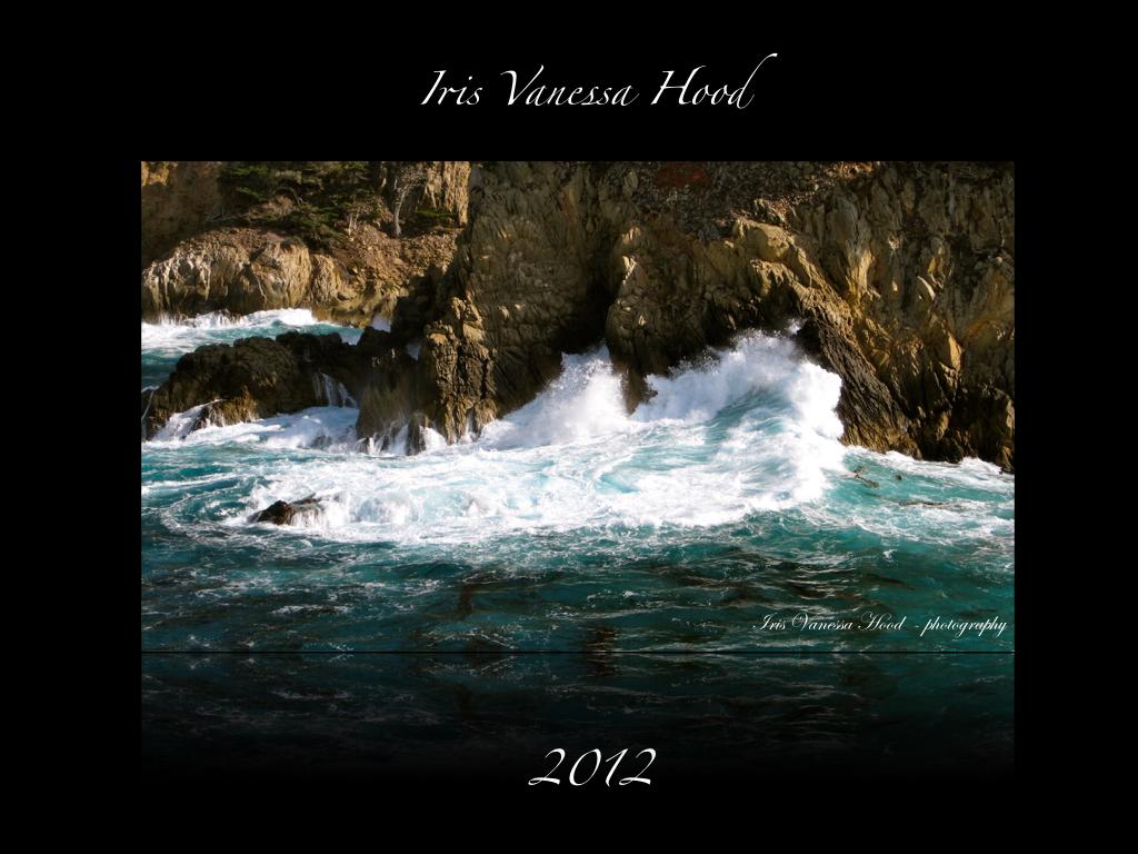 Point_Lobos_Iris_2012_IVH_blog.001
